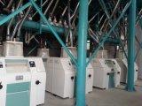 10 automáticos europeus - linha da fábrica de moagem do trigo 500tpd