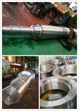 Bride 300-6500mm de pièce forgéee de grand diamètre