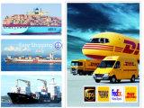 De efficiënte Dienst DHL/Courier/drukt wereldwijd van China uit aan