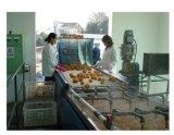 De Installatie van de Productie van het Vruchtesap