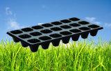 Gewächshaus-Gebrauch haltbare Einspritzung geformtes schwarzes PS-Plastiktellersegment für Gemüsepflanzenstartwert- für zufallsgeneratorbaum- und pflanzenschule