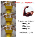 Stéroïdes anabolisant injectables Sustanon 250mg/Ml 300mg/Ml Bulk Steroid Powder