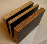 El negro laminado película caliente de la construcción de la prensa de 2 veces hizo frente a la madera contrachapada
