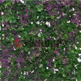 Зеленая стена Стены Открытый Пластиковые Hedges Забор Искусственный Hedge