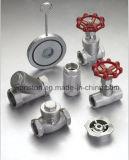 Oblate-Typ einzelnes Platten-Schwingen-Rückschlagventil Dn25-Dn400