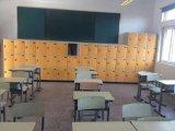 Kabinet het van uitstekende kwaliteit van de Opslag voor het Gebruik van de School