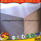 madeira compensada do Teak de 12mm Okoume/Keruing/Burma para a mobília