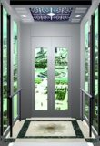 Bon prix d'ascenseur résidentiel avec la qualité