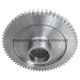 Dente cilindrico Gear con Flower Hole
