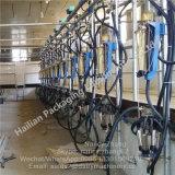 Автоматическая молочная корова доя систему салона с измерителем прокачки молока