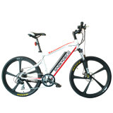 Grosse Energien-Hochgeschwindigkeitsstadt-elektrisches faltbares Fahrrad (CMS-TDE11Z)