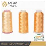 Покрашенная пряжа 120d/2 резьбы вышивки Viscose рейона 100%