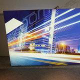 Solo rectángulo ligero lateral del aluminio LED de Seg para la visualización publicitaria de interior