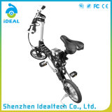 Bicicleta elétrica importada 36V de dobramento do motor de bateria 250W