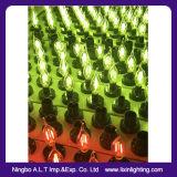 Bulbo do filamento do diodo emissor de luz da vela de C35 2With4With6W para a decoração