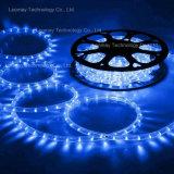 プールの噴水ライトIP68 2ワイヤー円形のhorizonal LEDロープライト