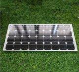 panneau fait maison de picovolte d'énergie d'énergie solaire de 100W Sun