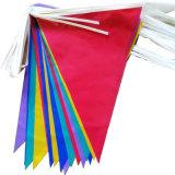 Stamina della bandierina del triangolo stampata abitudine variopinta da vendere la promozione