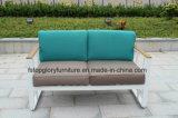 Sofà sezionale del giardino della nuova di disegno di svago mobilia esterna del patio (TG-1336)
