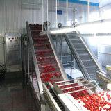Lampone congelato/riga di congelamento di lavorazione della frutta, riga completa macchinario sulla vendita