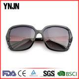 Óculos de sol de vinda novos do policarbonato de Ynjn para as mulheres (YJ-A4046)