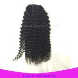 Menschenhaar-Webart-verworrene lockige Großhandelsjungfrau malaysisches Remy Haar