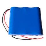 24V het navulbare Pak van de Batterij van het Lithium voor e-Autopedden
