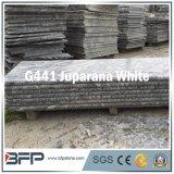 Xiamen отполировал Vitrified каменную плитку стены ванной комнаты пола мрамора гранита