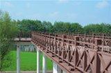 Rail de bois en plastique de haute qualité Rail de jardin en plein air Patio Rail Rail System