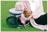 小さい犬及び猫のための通気性のペット買物袋