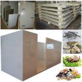 Stanza del congelatore di conservazione frigorifera per la memoria di frutti di mare