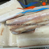 Sobre el tiburón azul de 10kgs Hgt (BS001)