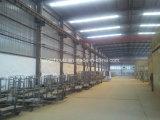 Pittura della polvere/linea produzione del rivestimento