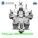Fabriek van de Vorm van de Injectie van de Precisie van de douane de Plastic van China