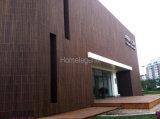 Pavimentazione di bambù di Decking tessuta filo esterno