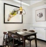 Lampada Pendant d'attaccatura decorativa chiara Pendant di nuovi disegni per sala da pranzo