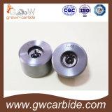 Graines S11 S13 W104 W105 de tréfilage de carbure cimenté