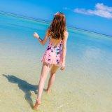 Het comfortabele Jonge Meisje Van uitstekende kwaliteit Swimwear van de Bikini van het Geslacht van de Stof Hete