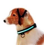 Ворот собаки безопасности USB перезаряжаемые проблескивая СИД Nylon