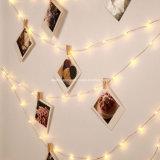 Mikro-LED-Zeichenkette beleuchtet batteriebetriebene multi Farben-Minizeichenkette-Licht-ultra dünne silberne Drahtseil-Lichter für Baum-Hochzeitsfest