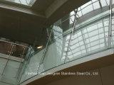 Het woon BinnenTraliewerk van de Trede van het Balkon van het Roestvrij staal voor Trappen