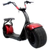 Motorfiets van de Autoped van de Mobiliteit van Citycoco de Zelf In evenwicht brengende Elektrische Blokkenwagen Behandelde
