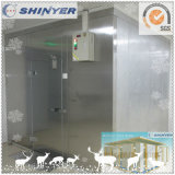 Pièce fraîche de Shinyer avec le condensateur et l'évaporateur