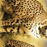 100%Polyester sprenkelte Leopard-Pigment&Disperse gedrucktes Gewebe für Bettwäsche-Set
