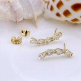 한국 형식 귀걸이 장식 못 귀걸이 새로운 보석