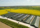 Luz de estructura de acero Casa con rejilla de energía fotovoltaica