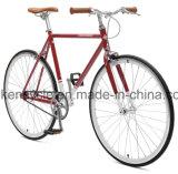 Bike шестерни горячей скорости сбывания 700c дешевой одиночной фикчированный Bicycles Sy-Fx70011