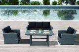 Vimine esterno del giardino della mobilia del rattan del patio, mobilia esterna stabilita del salotto di Dinastia-Benno di Kd (J563-KD)