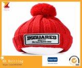 Шлемы способа зимы с вышивкой