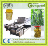 Pepino Pickled e fábrica de tratamento dos vegetais